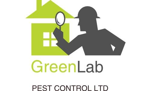 Local Pest Control Willenhall , Wednesbury , Bilston , Sandwell , Dudley , Wolverhampton Pest Control