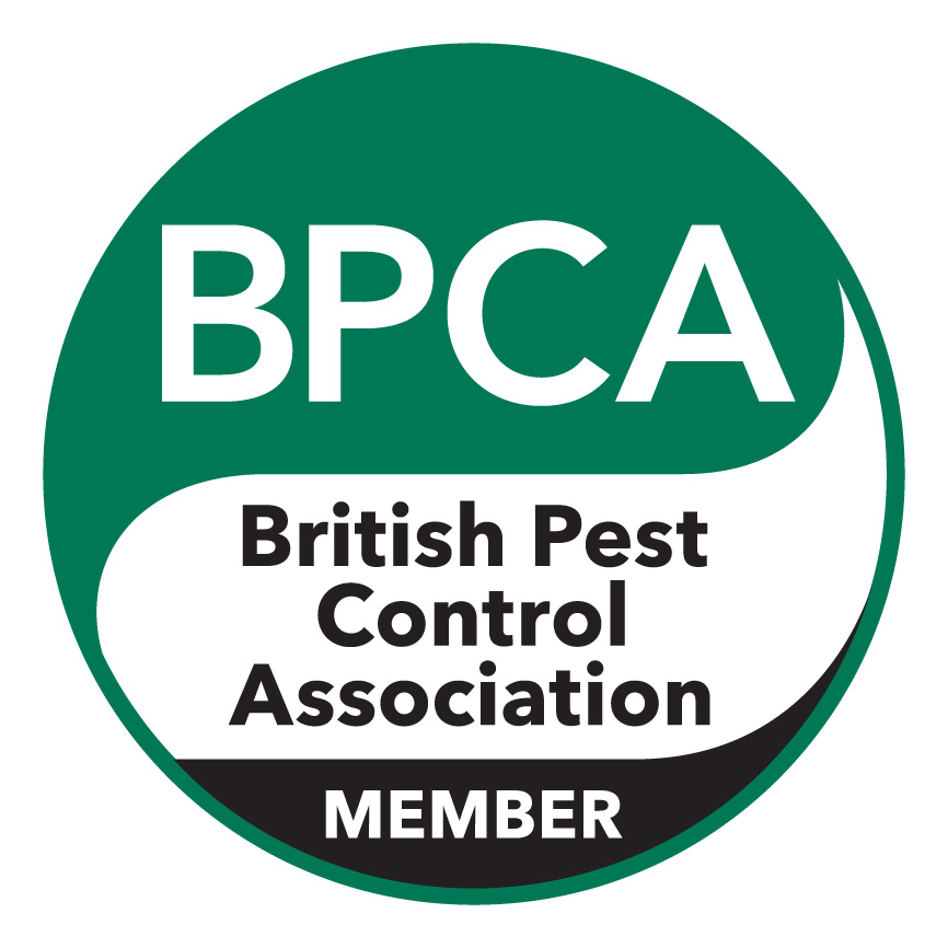 BPCA members pest control qualified pest control willenhall